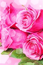 Preview iPhone wallpaper Bouquets flowers, pink roses