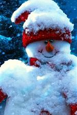 Christmas, new year, snowman, winter