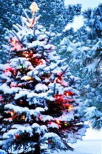 Preview iPhone wallpaper Christmas, snow, New Year, tree, lights