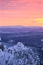 Preview iPhone wallpaper Finland, Lapland, winter snow, forest, sunset, sky