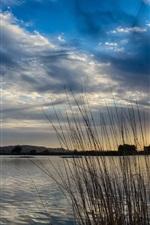 Lago, manhã, sol, nascer do sol, nuvens