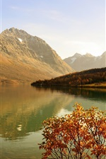 Preview iPhone wallpaper Lake, mountains, forest, shrub, sunshine, autumn
