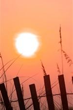 Morning sunrise, pink sky, sunshine, fence, grass
