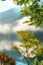 Nature scenery, mountains, forest, trees, lake, mist, morning, reflection