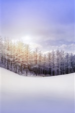 Preview iPhone wallpaper Nature winter, forest, snow, hill, sky, sun rays
