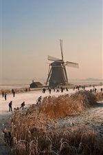 Preview iPhone wallpaper Netherlands, winter, mill, ice river