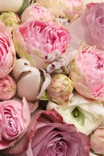 Preview iPhone wallpaper Pink flowers, beautiful rose, romance