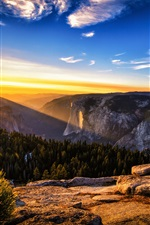 Preview iPhone wallpaper Sunrise landscape, mountains, forest, pine trees, sun rays
