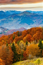 Preview iPhone wallpaper Sunset, autumn mountains, beautiful trees, field, skyline