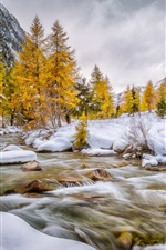Preview iPhone wallpaper Val Bever, Engadin, Schweiz, winter, snow, trees, river, white