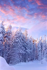 Preview iPhone wallpaper Winter, snow, trees, mountains, sky, clouds, cold