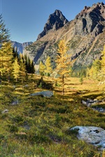 Preview iPhone wallpaper Yoho National Park, Canada, mountains, trees, walking paths