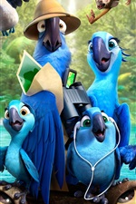 Preview iPhone wallpaper 2014 Rio 2