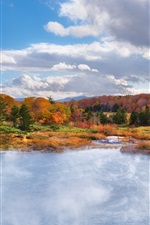 Preview iPhone wallpaper Autumn landscape, nature, forest, fall, pond