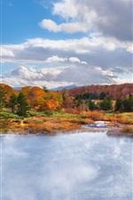 Autumn landscape, nature, forest, fall, pond
