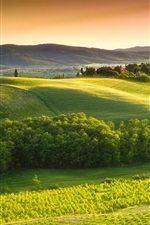 Preview iPhone wallpaper Italy, Tuscany, countryside, green nature, trees, fields, sky