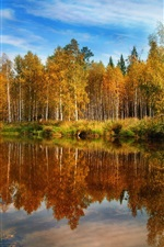 Preview iPhone wallpaper Nature fall, forest, lake, water, reflections