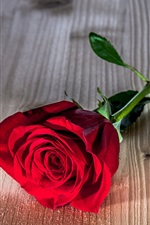 Preview iPhone wallpaper Red rose flower, wooden table