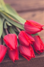 iPhone fondos de pantalla Flores de tulipán rojo, tablero de madera