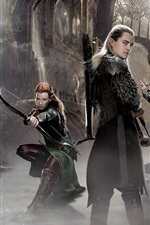 Preview iPhone wallpaper The Hobbit: The Desolation of Smaug, movie 2014