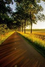 iPhone fondos de pantalla Árboles, camino, puesta del sol, la hierba, bosque, campos