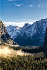 Preview iPhone wallpaper USA, California, Yosemite National Park, mountains, forest, fog