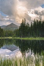 Preview iPhone wallpaper USA, California, mountains, forest, lake, reflection