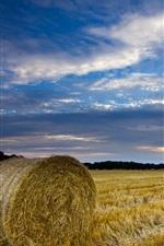 Vorschau des iPhone Hintergrundbilder Großbritannien, England, Norfolk, Landschaft, Feld, Stroh, Heu, blauer Himmel