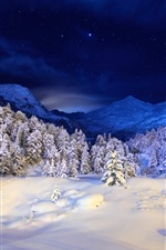 Preview iPhone wallpaper Winter night, mountains, stars, snow, forest, trees