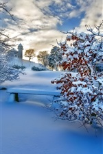 Preview iPhone wallpaper Winter thick snow, trees, sunset, sky, clouds