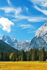 Preview iPhone wallpaper Alpes, mountains, blue sky, clouds, grass, forest, autumn