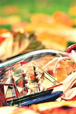 紅葉、ボトル、ボート