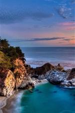 미리보기 iPhone 배경 화면 캘리포니아, 줄리아 파이퍼 번스 주립 공원, 바위, 해안, 나무, 일몰