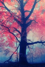 Preview iPhone wallpaper Forest trees, red leaves, fog, mist