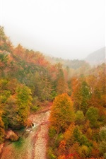 Preview iPhone wallpaper Mountain, forest, river, autumn, fog, red leaves