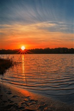 Preview iPhone wallpaper Nature landscape, forest, lake, reeds, sun, morning, sunrise