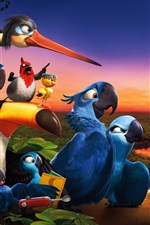 Preview iPhone wallpaper Rio 2 HD