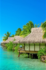 Preview iPhone wallpaper Sea, blue sky, resort, bungalow, palm trees, beach