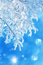 Preview iPhone wallpaper Tree branches, snow, winter, blue