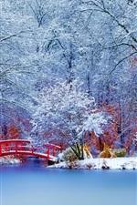 Preview iPhone wallpaper Winter park, snow, trees, bridge
