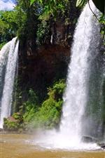 Argentina, Iguazu, nature, water, rocks, trees