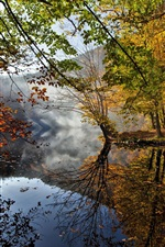 Preview iPhone wallpaper Autumn landscape, river, leaves, trees, fog, water reflection