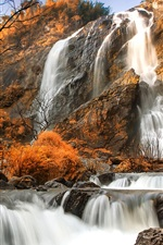 Preview iPhone wallpaper Autumn, trees, yellow, rocks, waterfalls