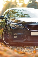 Preview iPhone wallpaper BMW 550 F10 black car in the autumn