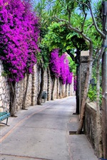 Preview iPhone wallpaper Beautiful city, Italy, streets, trees, flowers, benches