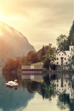 Preview iPhone wallpaper Beautiful morning scenery, mountain, lake, house, swans, forest