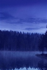 Preview iPhone wallpaper Evening, forest, river, nature, blue
