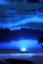 Evening, night, sky, clouds, sea, tropical, palm tree, moon