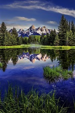 Preview iPhone wallpaper Grand Teton National Park, Wyoming, mountains, lake, reflection, forest