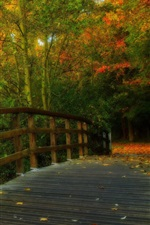 Preview iPhone wallpaper HDR scenery, park, leaves, trees, forest, autumn, wood bridge